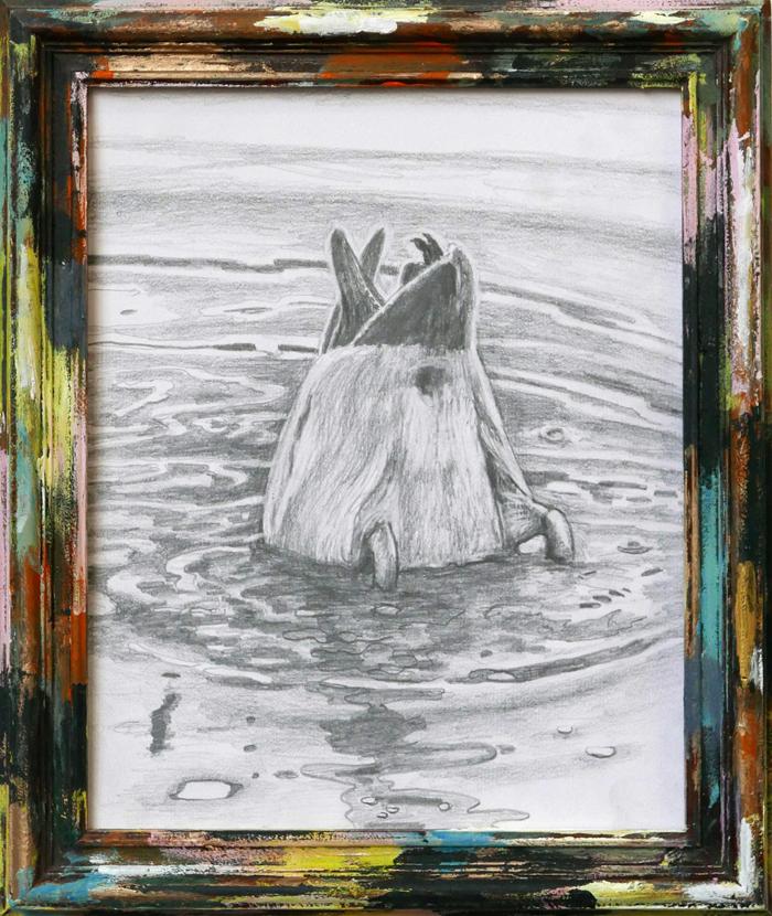 drawing of diving mallard, tekening van duikende eend
