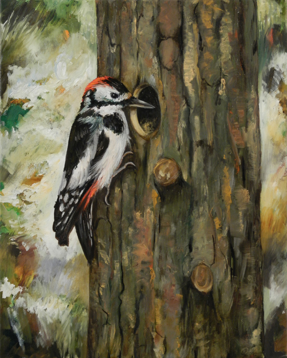 Grote bonte specht III / Great Spotted Woodpecker III (2012) oil on canvas, 50 x 40 cm, central painting of a triptych
