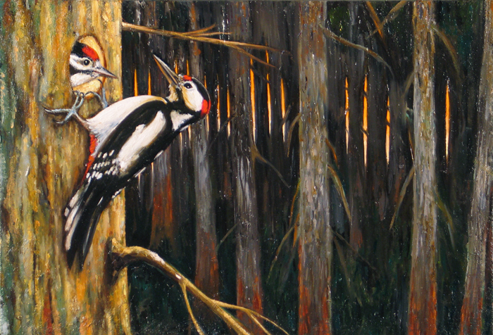 Grote bonte specht IV / Great Spotted Woodpecker IV (2014) oil on paper and wood, 21 x 30 cm.