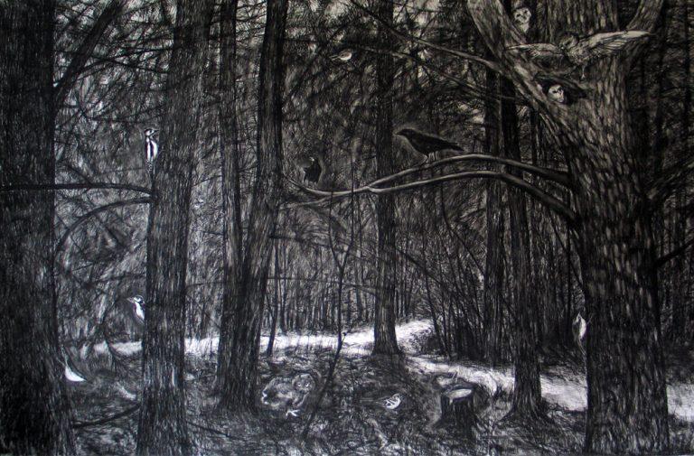 Big drawing forest with birds, grote zwartwit tekening van vogels in het bos