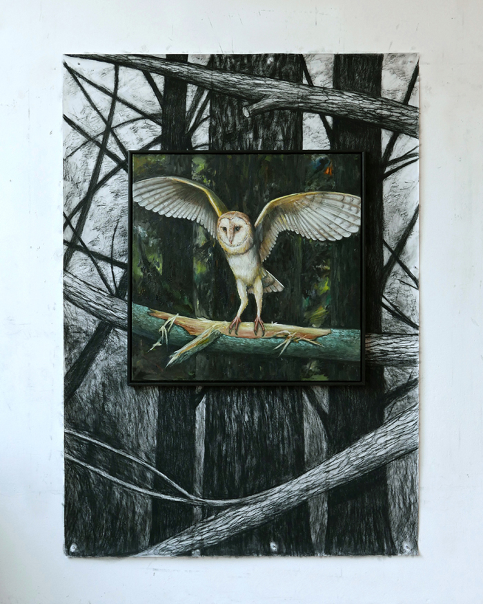 Kerkuil / Barn Owl (2017) oil painting, drawing compressed charcoal, 170 x 125 cm