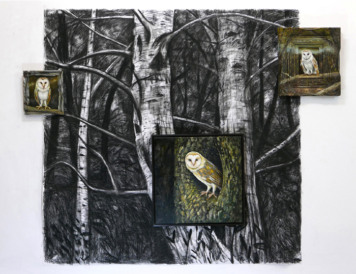 Kerkuilen / Barn Owls (2017) oil pantings, drawing compressed charcoal, 150 x 170 cm