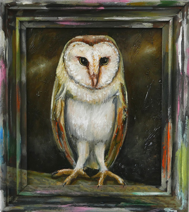 Kerkuil V / Barn Owl V (2017) oil on board and frame, 26 x 23 cm