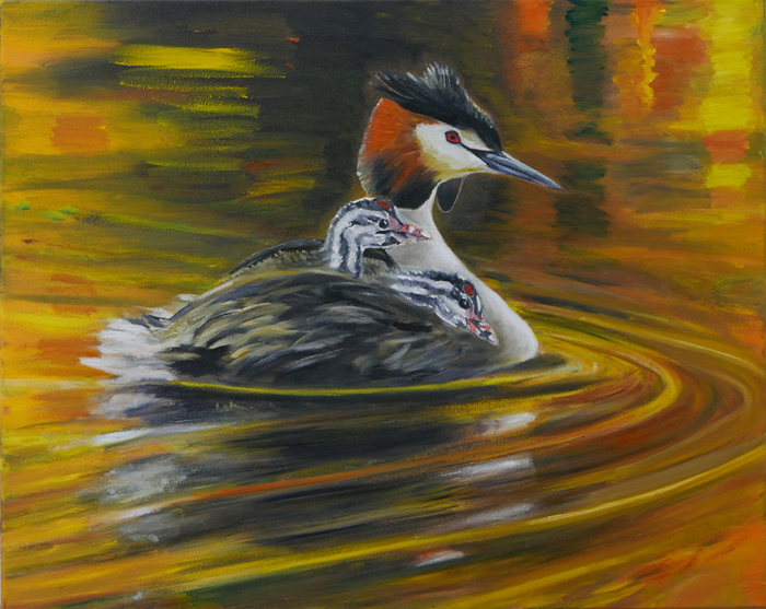 Fuut IV / Great Crested Grebe IV (2018) oil on canvas, 40 x 50 cm