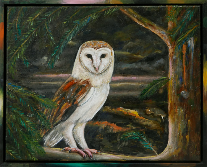 Kerkuil II / Barn Owl II (2018) oil on canvas and frame, 43 x 53 cm
