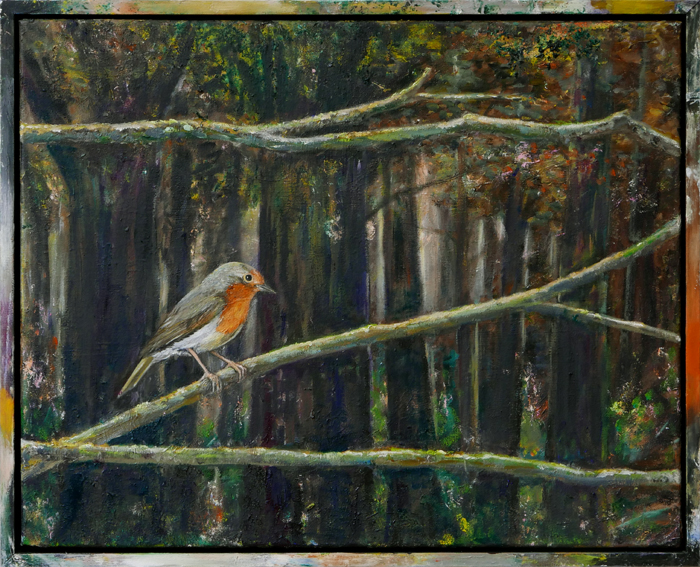 Roodborst V / Robin V (2018) oil on canvas and frame, 43 x 53 cm