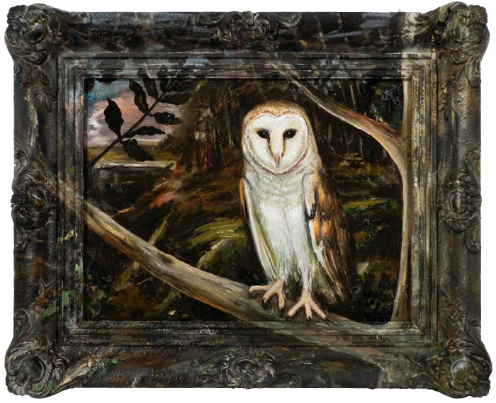 Kerkuil / Barn Owl (2012, oil on wood and frame, 43 x 53 cm