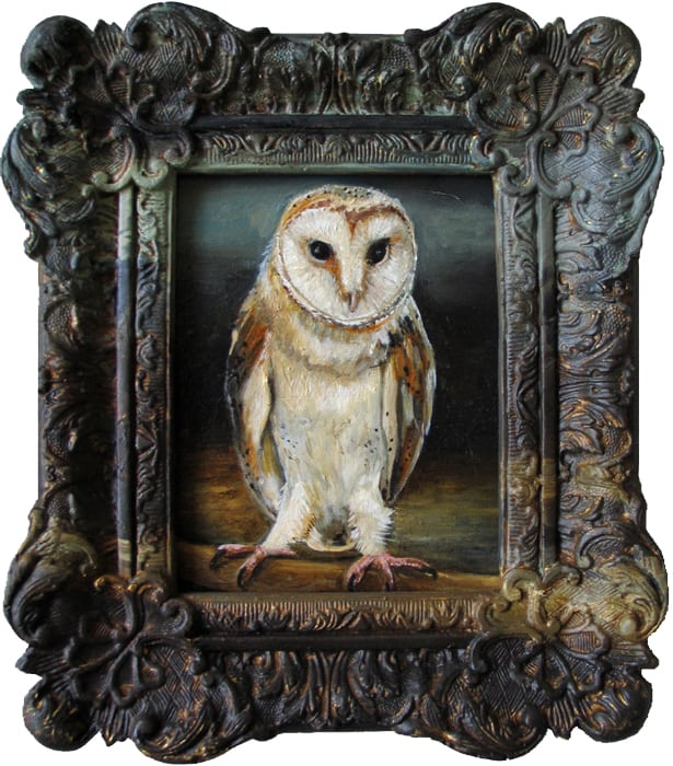 Kerkuil III / Barn Owl III (2014) oil on board and frame, 20 x 18 cm