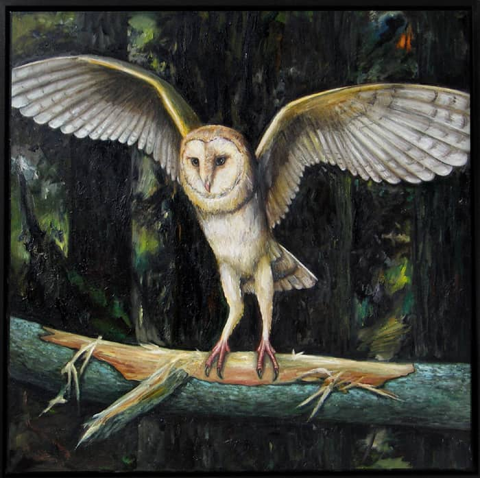 Kerkuil VII / Barn Owl VII (2016) oil on canvas, 80 x 80 cm